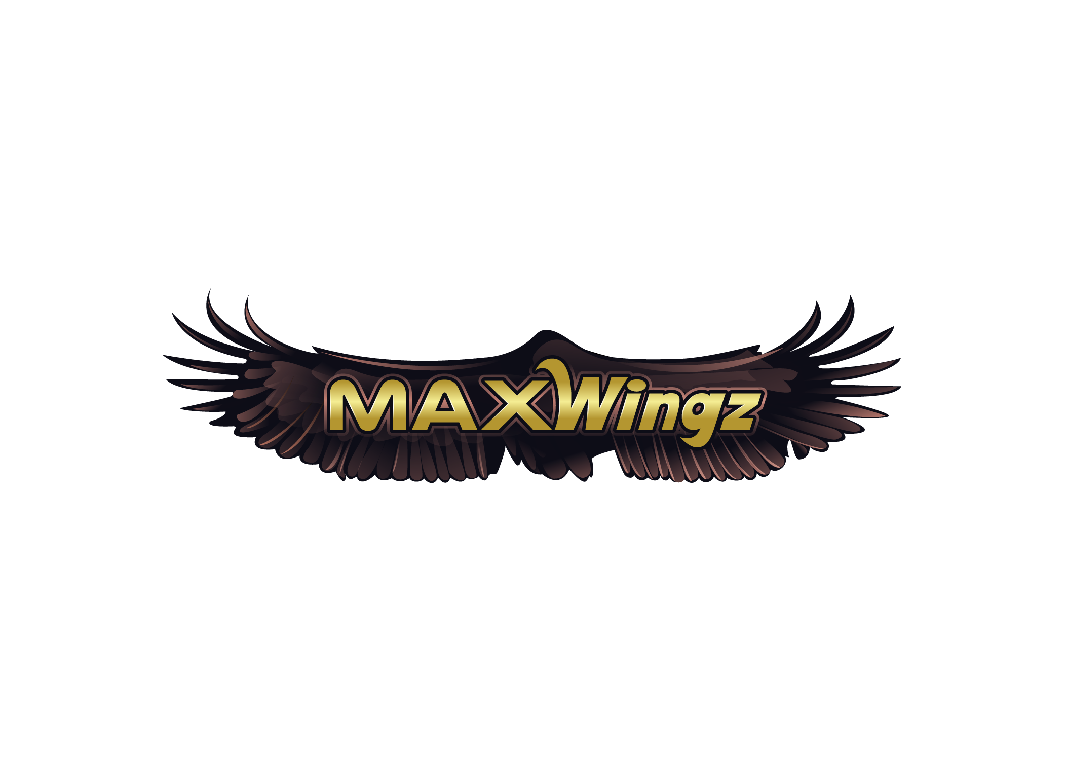 MaxWingz 10 final 16052016